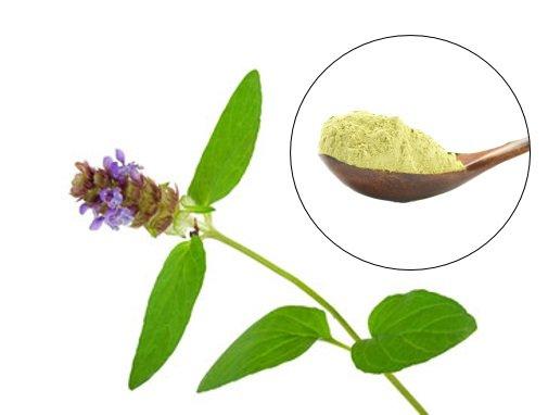 Skullcap Plant and Green Powder