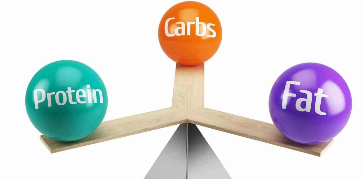 Understanding your Macros in thigh fat loss