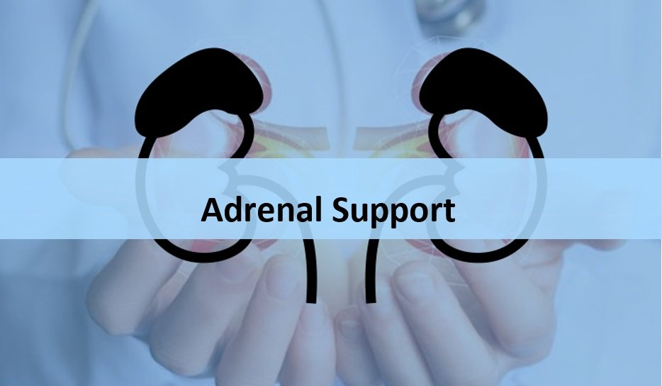 Adrenal Support Supplements